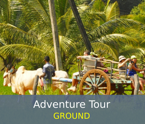 Adventure Tour - Ground